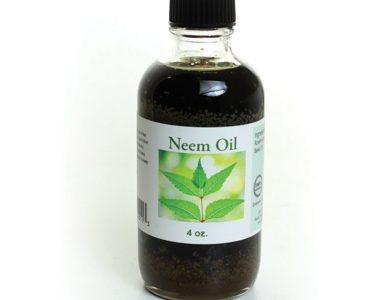 Purifying Neem Oil
